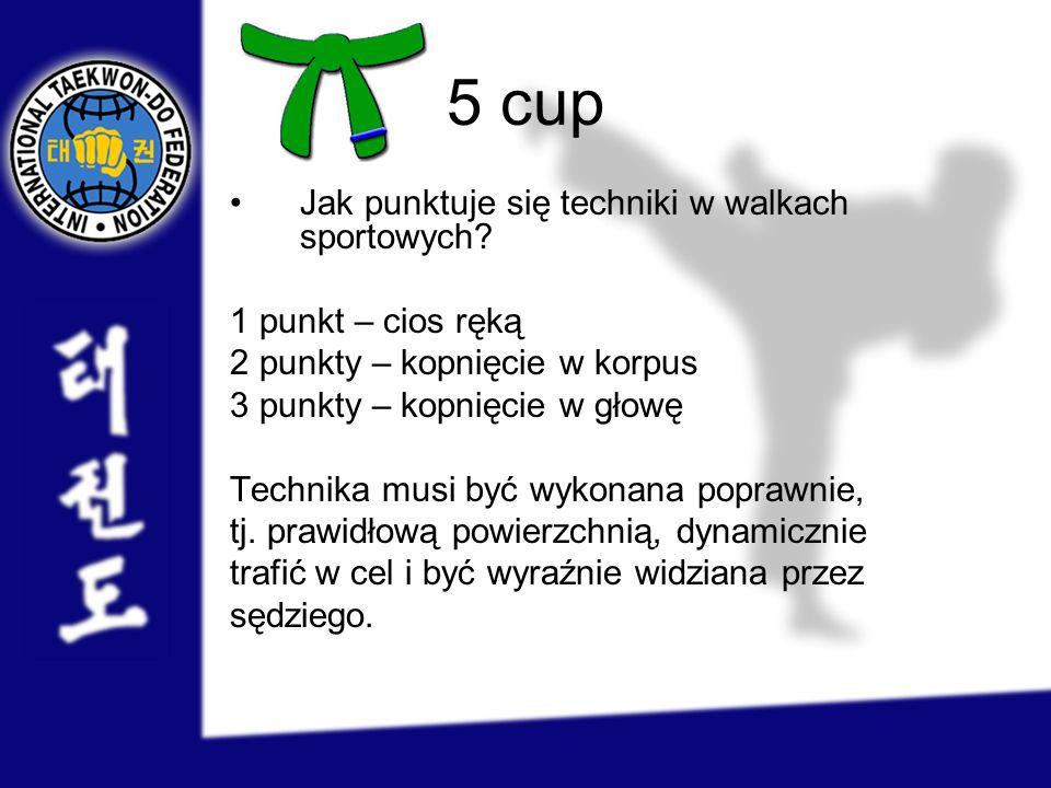 5 cup Jak punktuje się techniki w walkach sportowych