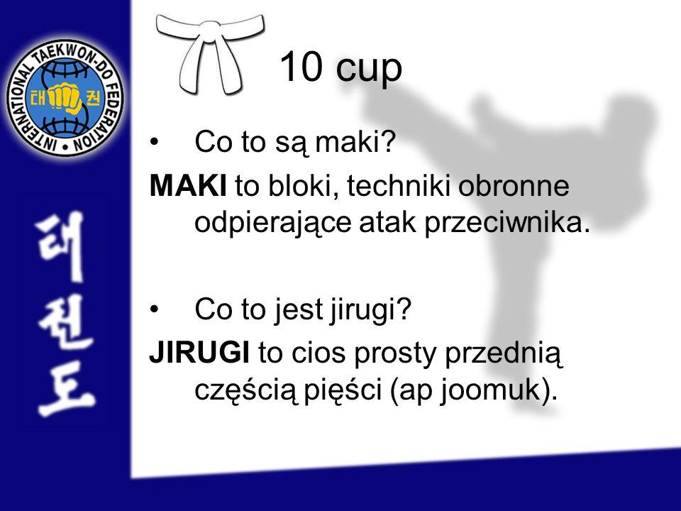 10 cup Co to są maki MAKI to bloki, techniki obronne odpierające atak przeciwnika. Co to jest jirugi