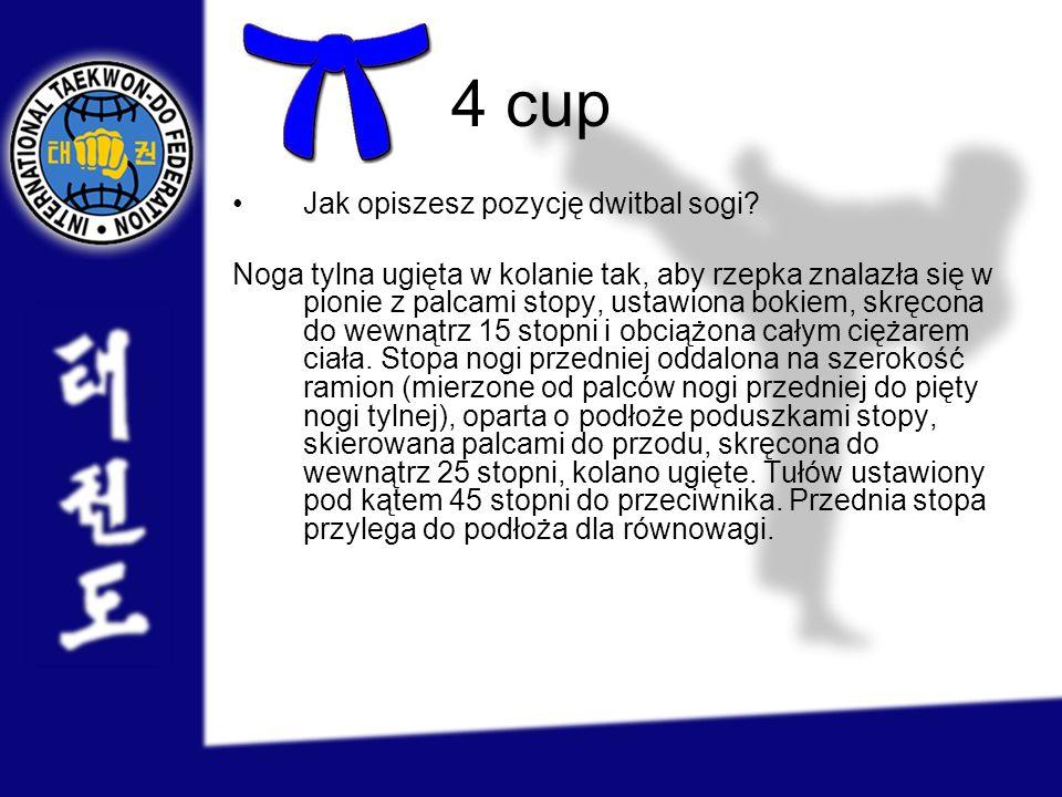 4 cup Jak opiszesz pozycję dwitbal sogi