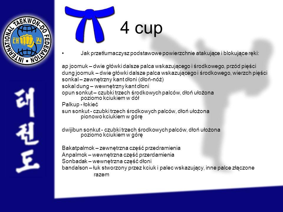 4 cup Jak przetłumaczysz podstawowe powierzchnie atakujące i blokujące ręki: