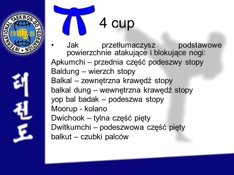 4 cup Jak przetłumaczysz podstawowe powierzchnie atakujące i blokujące nogi: Apkumchi – przednia część podeszwy stopy.