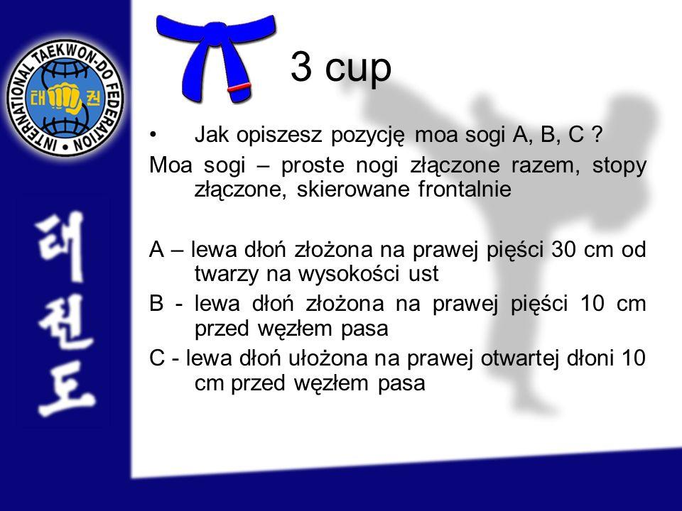3 cup Jak opiszesz pozycję moa sogi A, B, C