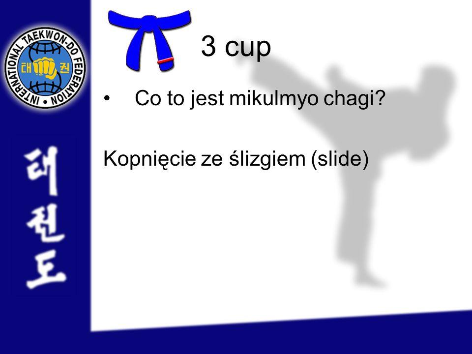 3 cup Co to jest mikulmyo chagi Kopnięcie ze ślizgiem (slide)