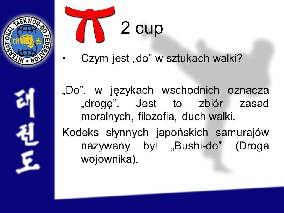 """2 cup Czym jest """"do w sztukach walki"""