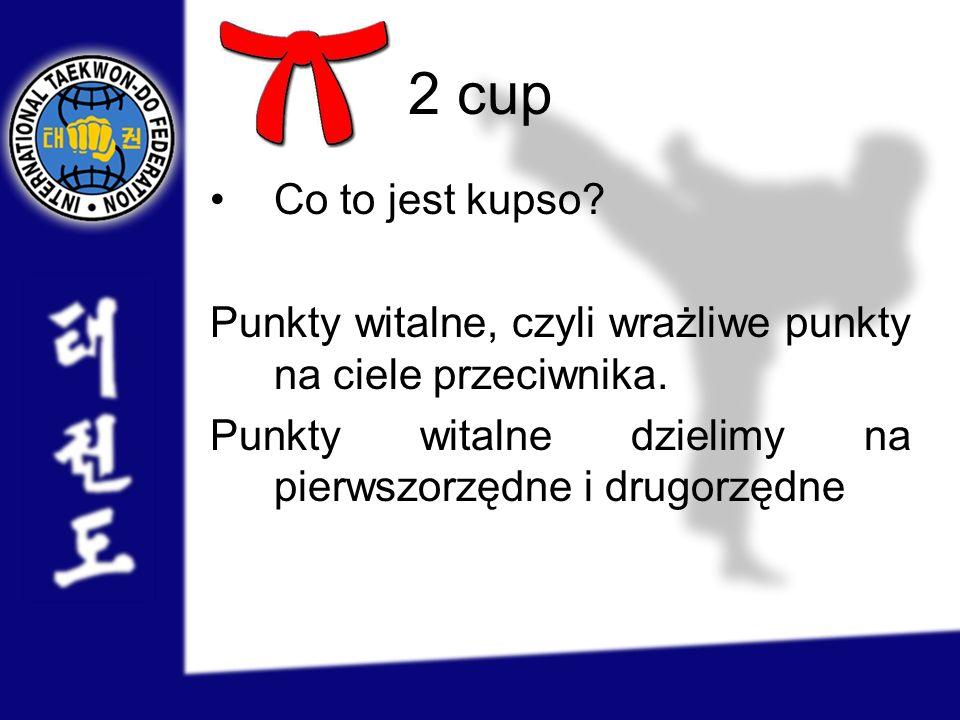 2 cup Co to jest kupso. Punkty witalne, czyli wrażliwe punkty na ciele przeciwnika.
