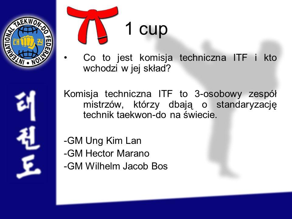 1 cup Co to jest komisja techniczna ITF i kto wchodzi w jej skład