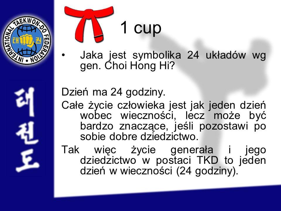1 cup Jaka jest symbolika 24 układów wg gen. Choi Hong Hi