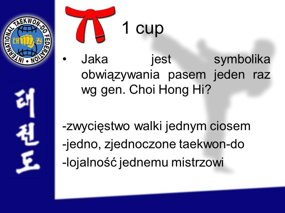 1 cup Jaka jest symbolika obwiązywania pasem jeden raz wg gen. Choi Hong Hi -zwycięstwo walki jednym ciosem.