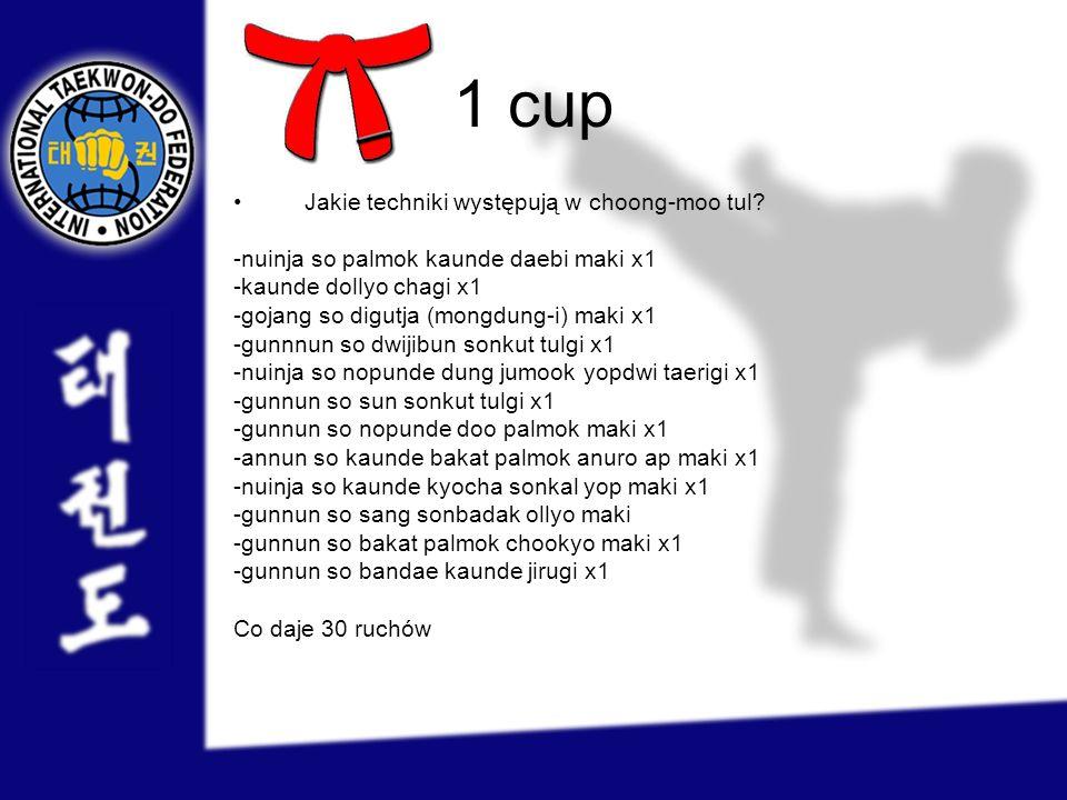 1 cup Jakie techniki występują w choong-moo tul