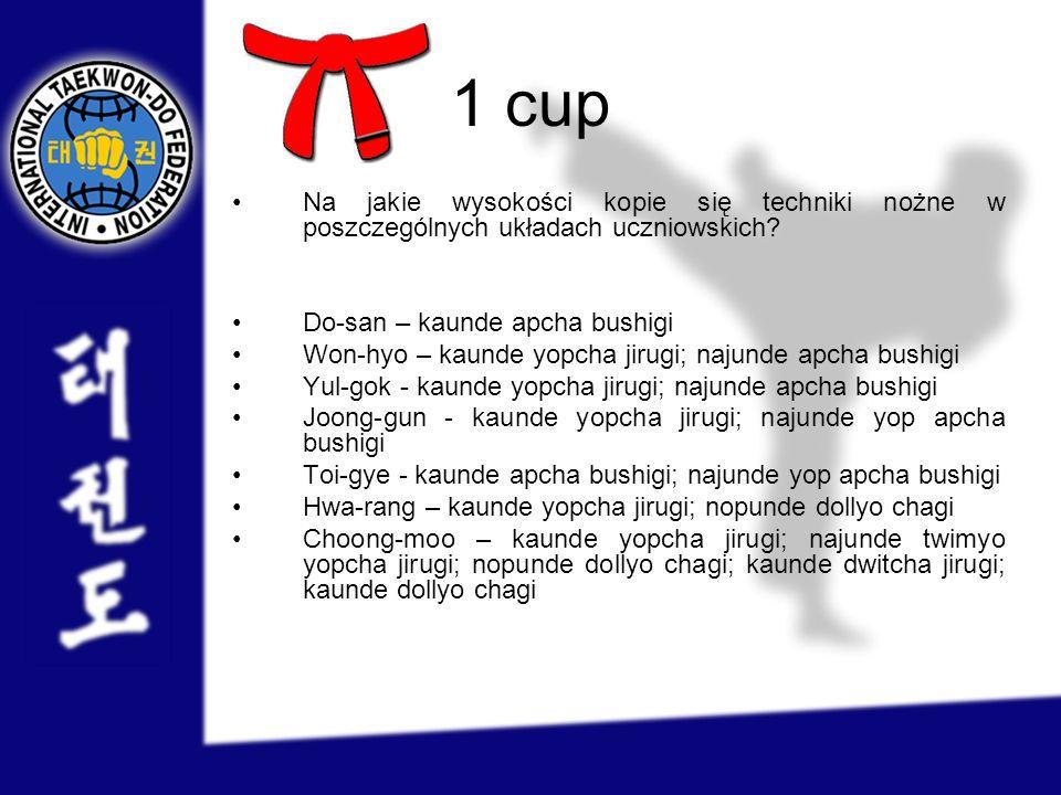 1 cup Na jakie wysokości kopie się techniki nożne w poszczególnych układach uczniowskich Do-san – kaunde apcha bushigi.