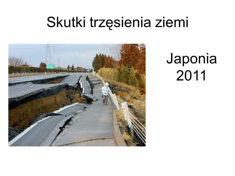 Skutki trzęsienia ziemi