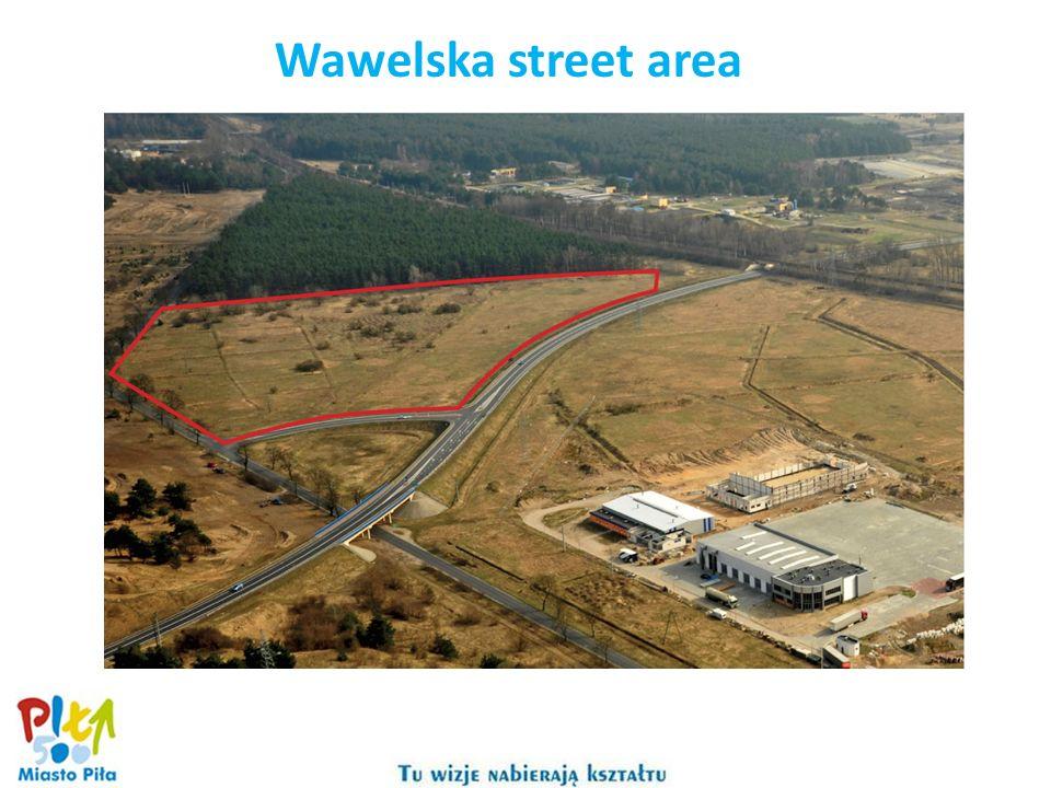 Wawelska street area