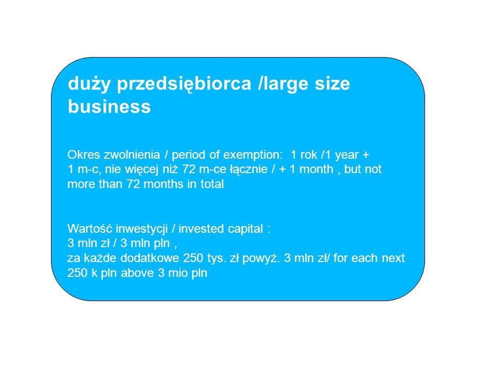 duży przedsiębiorca /large size business