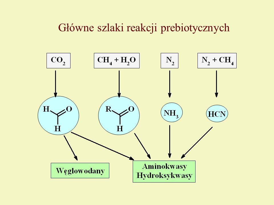 Główne szlaki reakcji prebiotycznych