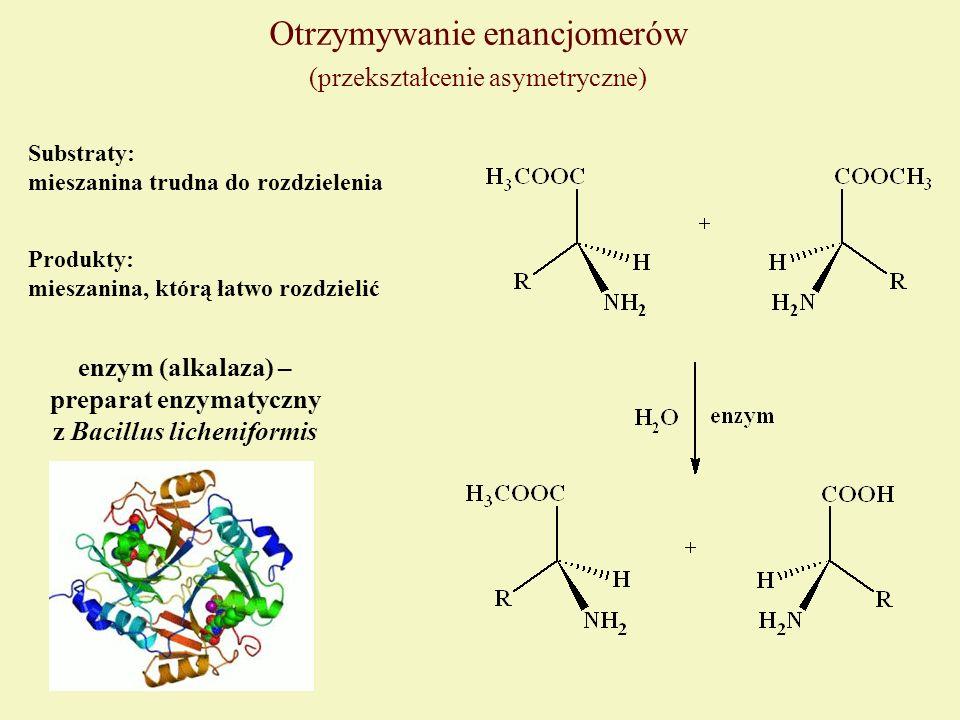 preparat enzymatyczny z Bacillus licheniformis