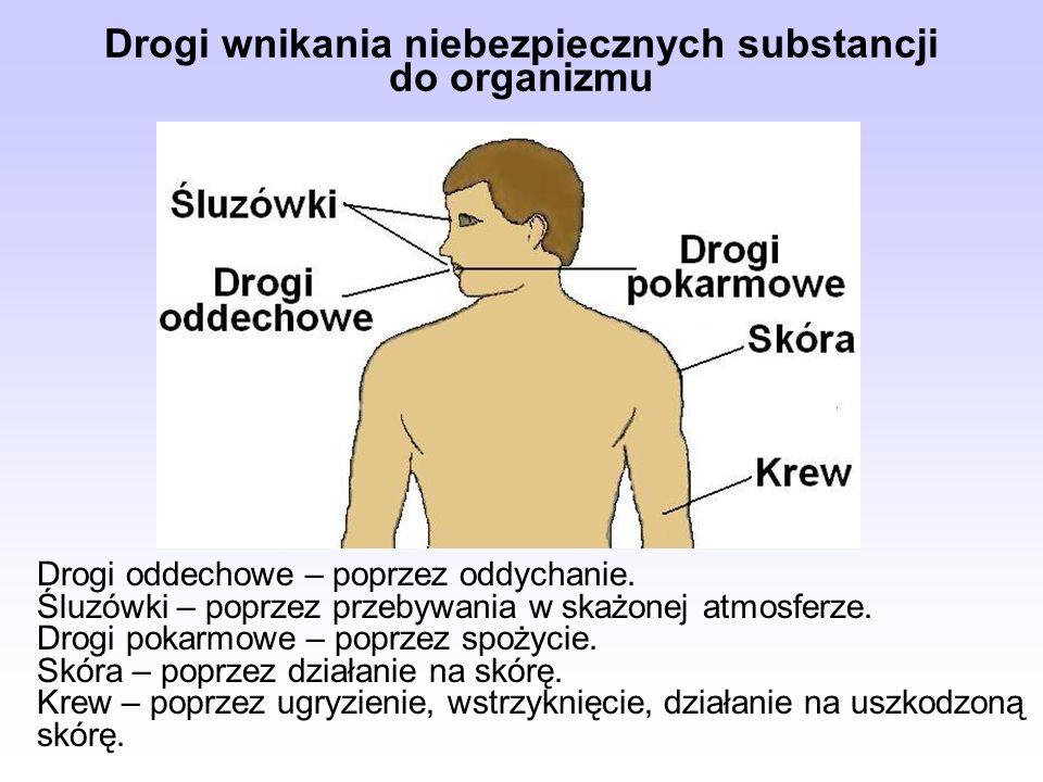 Drogi wnikania niebezpiecznych substancji do organizmu