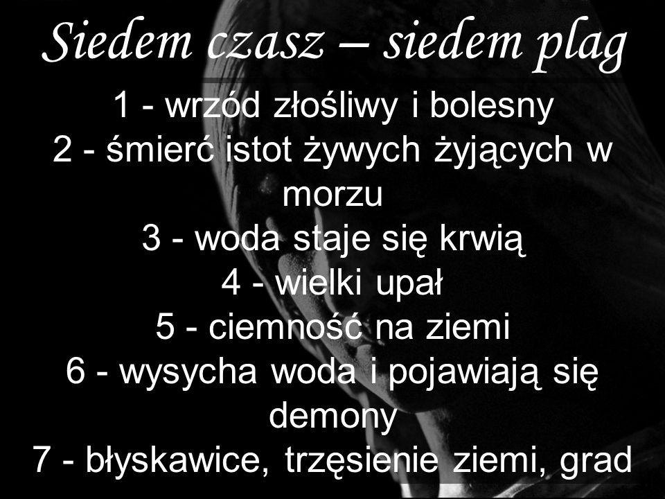 Siedem czasz – siedem plag