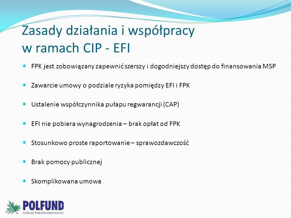 Zasady działania i współpracy w ramach CIP - EFI