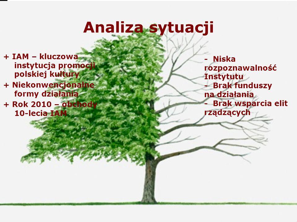 Analiza sytuacji + IAM – kluczowa instytucja promocji polskiej kultury