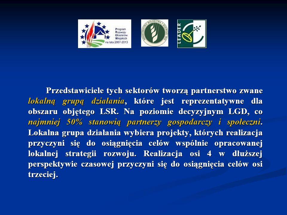 Przedstawiciele tych sektorów tworzą partnerstwo zwane lokalną grupą działania, które jest reprezentatywne dla obszaru objętego LSR.
