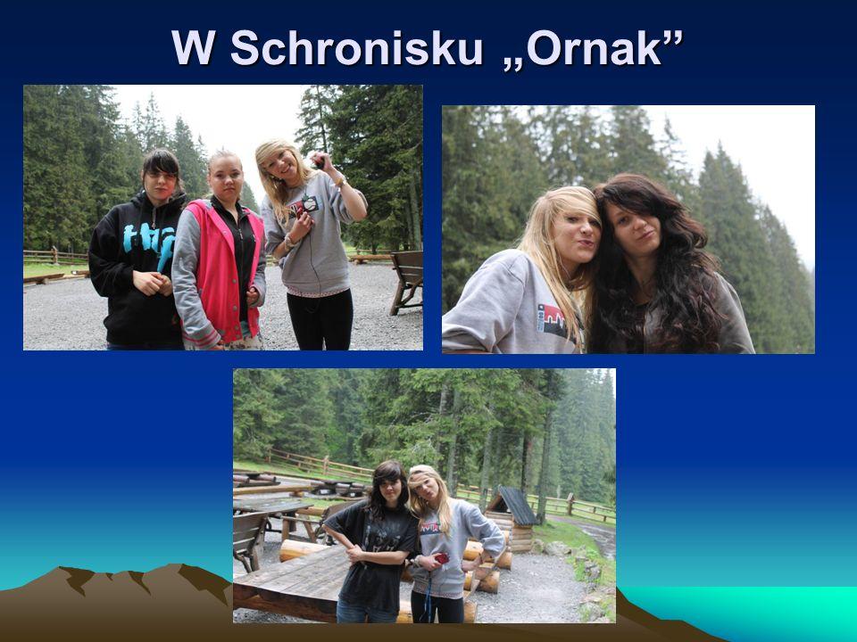 """W Schronisku """"Ornak"""