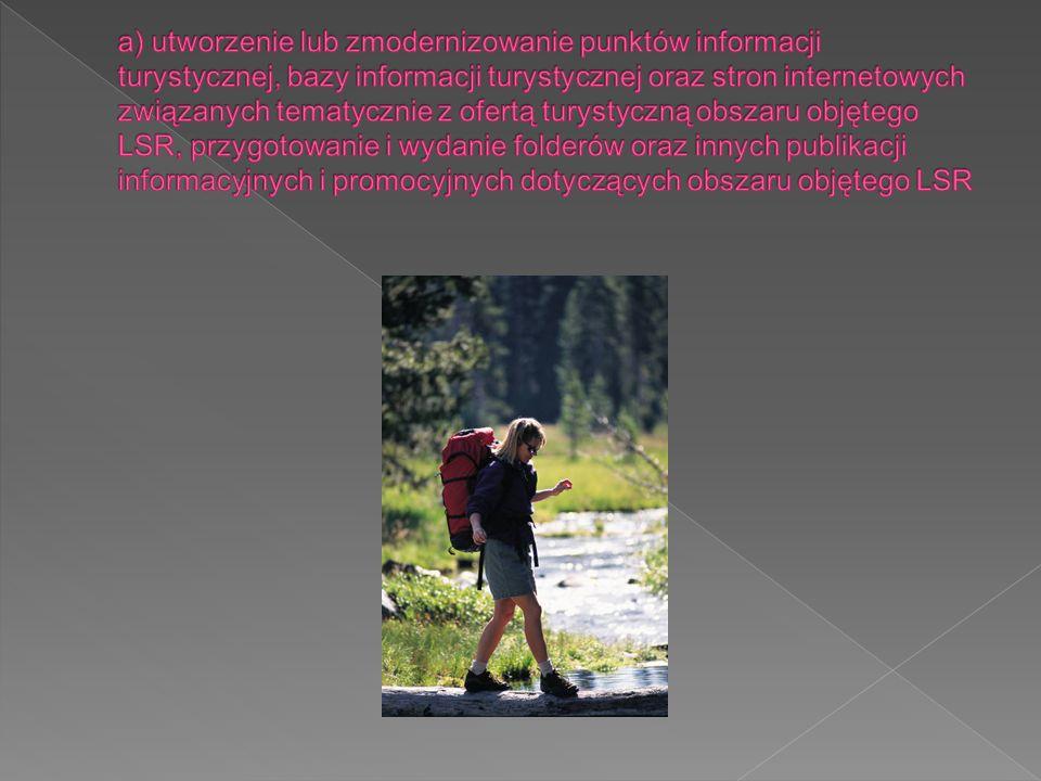 a) utworzenie lub zmodernizowanie punktów informacji turystycznej, bazy informacji turystycznej oraz stron internetowych związanych tematycznie z ofertą turystyczną obszaru objętego LSR, przygotowanie i wydanie folderów oraz innych publikacji informacyjnych i promocyjnych dotyczących obszaru objętego LSR