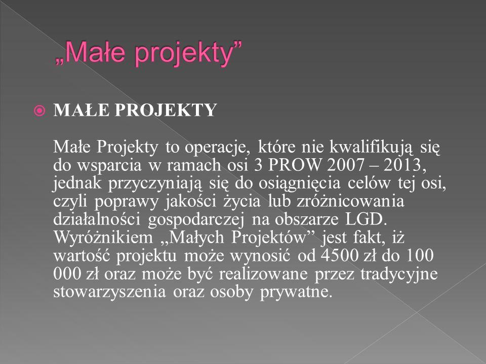 """""""Małe projekty"""