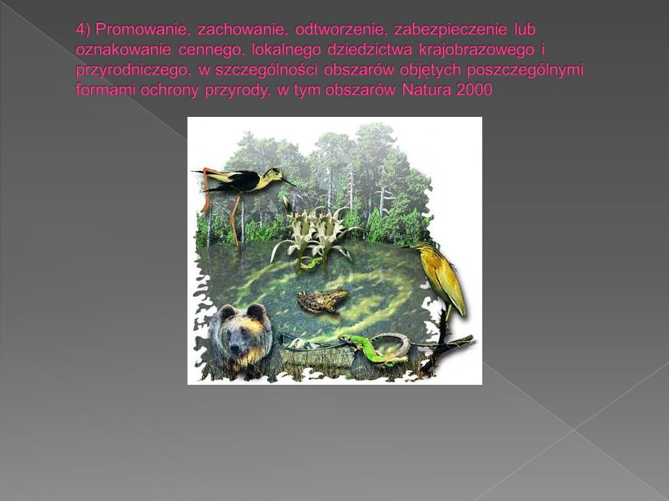 4) Promowanie, zachowanie, odtworzenie, zabezpieczenie lub oznakowanie cennego, lokalnego dziedzictwa krajobrazowego i przyrodniczego, w szczególności obszarów objętych poszczególnymi formami ochrony przyrody, w tym obszarów Natura 2000