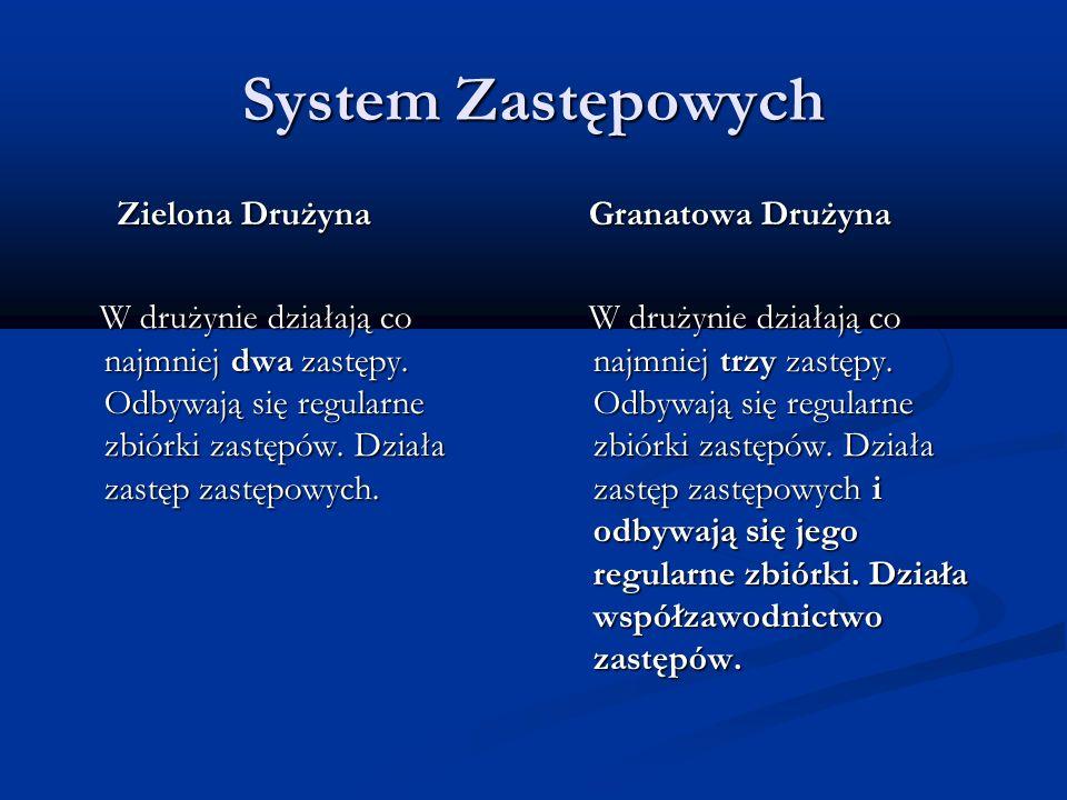 System Zastępowych Zielona Drużyna