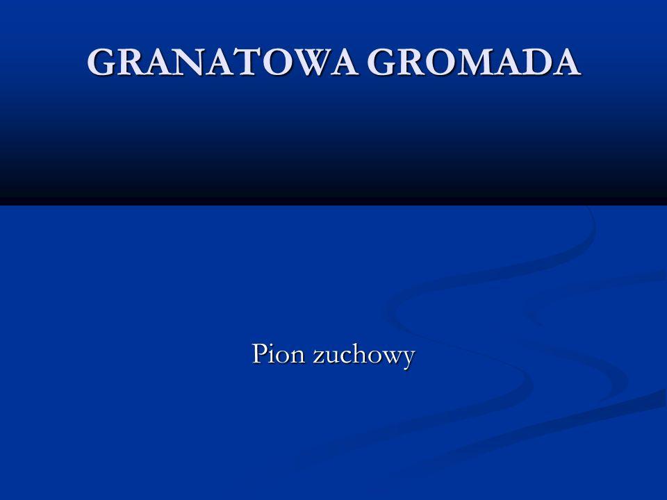 GRANATOWA GROMADA Pion zuchowy