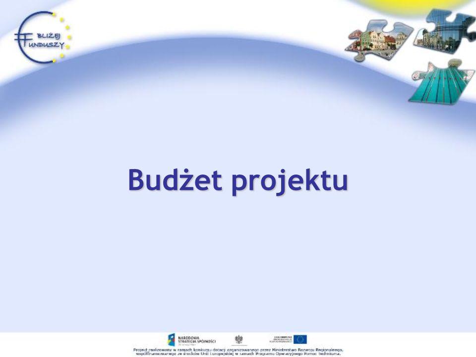 Budżet projektu