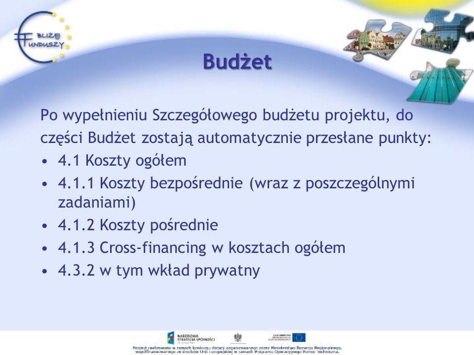 Budżet Po wypełnieniu Szczegółowego budżetu projektu, do