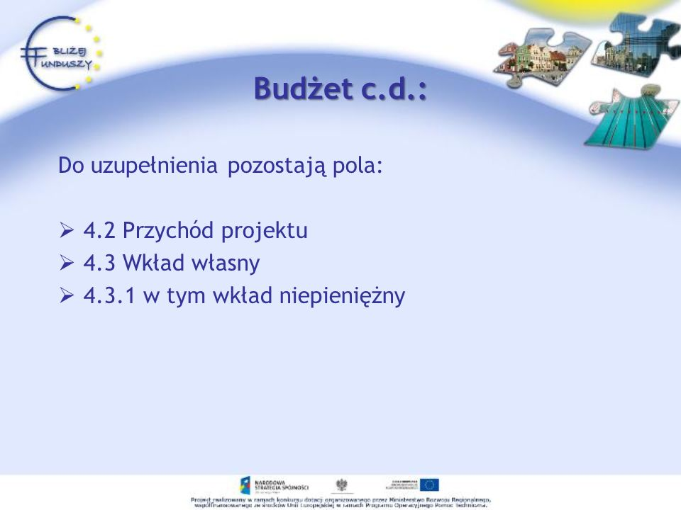 Budżet c.d.: Do uzupełnienia pozostają pola: 4.2 Przychód projektu