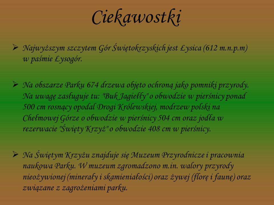 Ciekawostki Najwyższym szczytem Gór Świętokrzyskich jest Łysica (612 m.n.p.m) w paśmie Łysogór.
