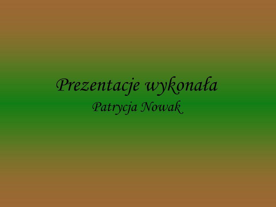 Prezentacje wykonała Patrycja Nowak