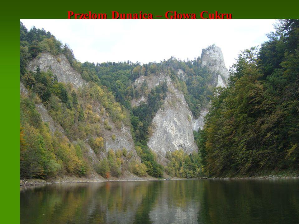 Przełom Dunajca – Głowa Cukru
