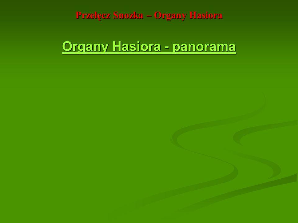 Przełęcz Snozka – Organy Hasiora