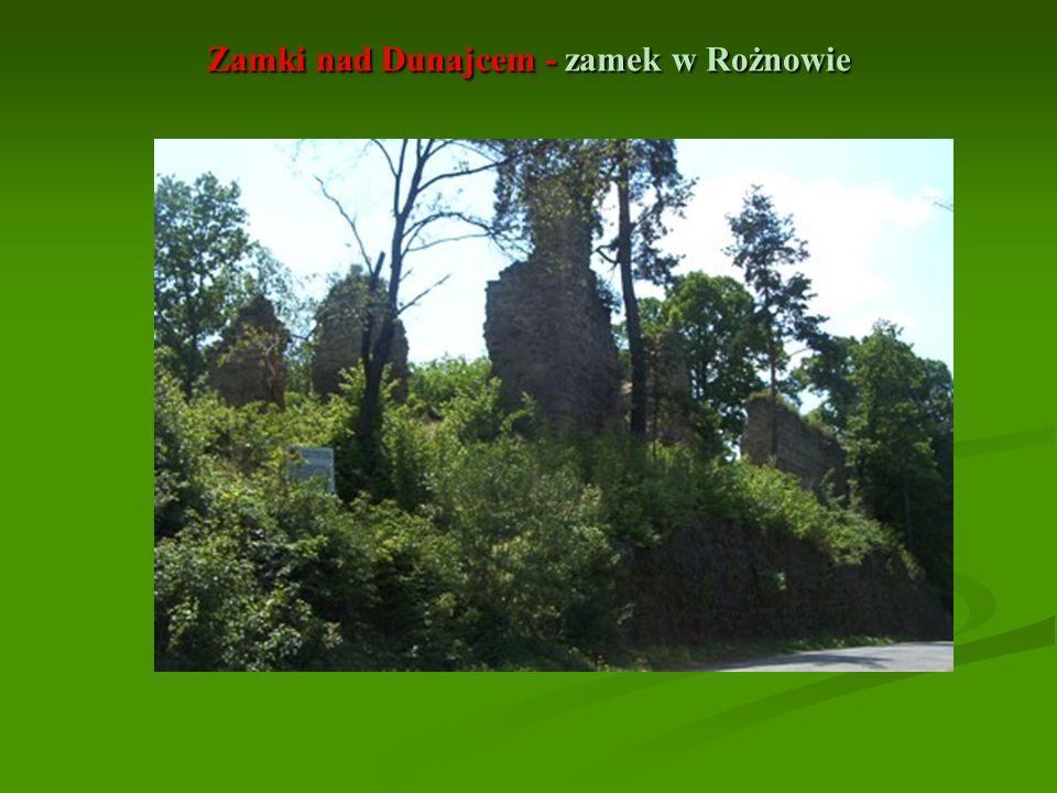 Zamki nad Dunajcem - zamek w Rożnowie