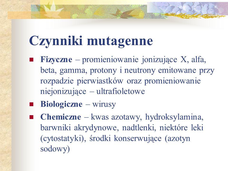 Czynniki mutagenne