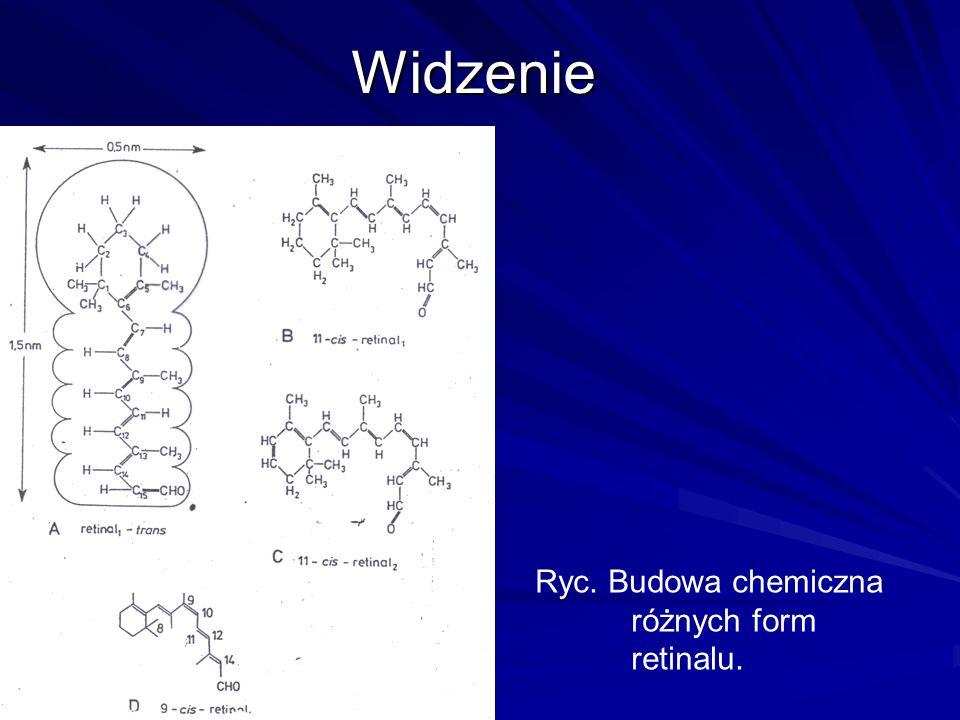 Widzenie Ryc. Budowa chemiczna różnych form retinalu.