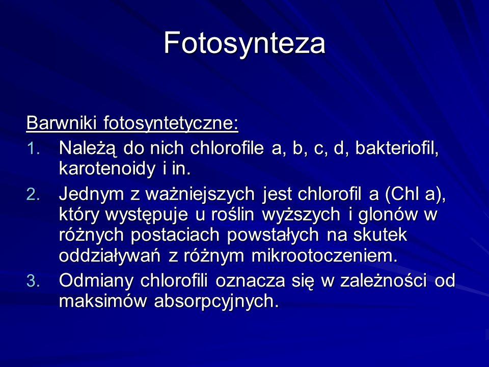 Fotosynteza Barwniki fotosyntetyczne:
