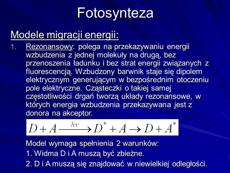 Fotosynteza Modele migracji energii: