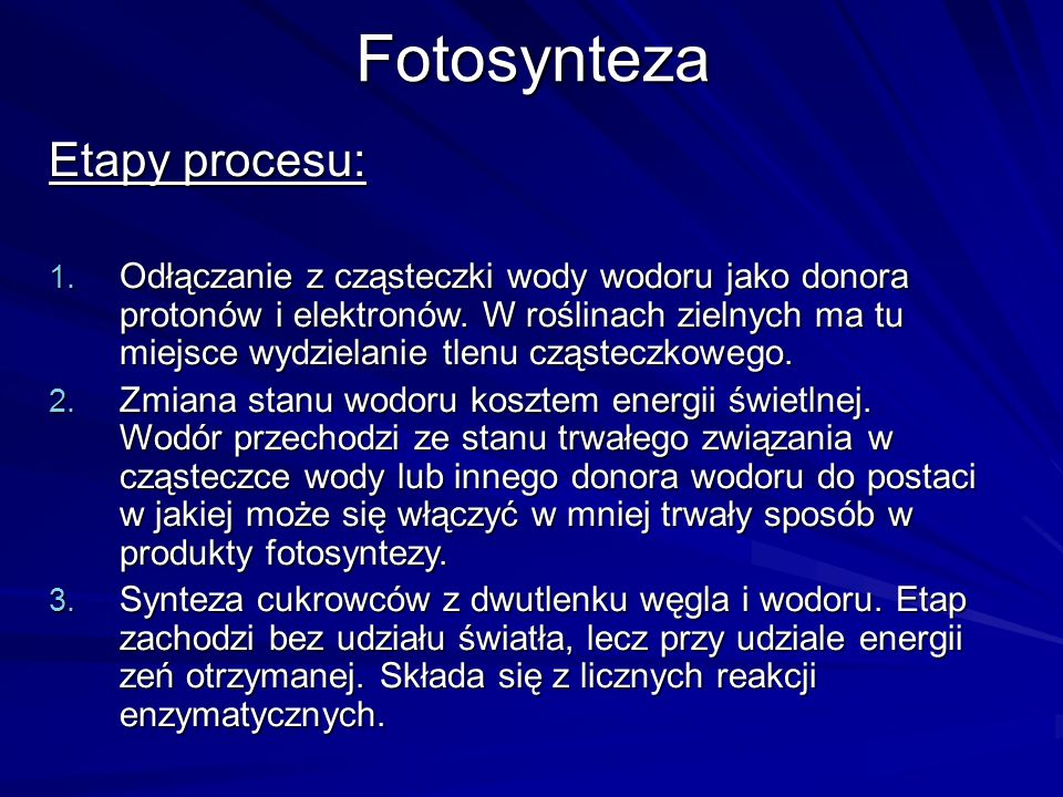 Fotosynteza Etapy procesu: