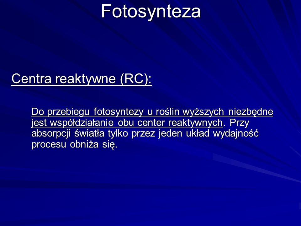 Fotosynteza Centra reaktywne (RC):