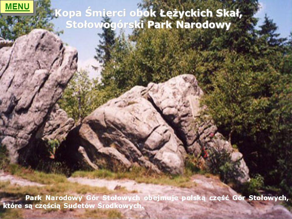 Kopa Śmierci obok Łężyckich Skał, Stołowogórski Park Narodowy