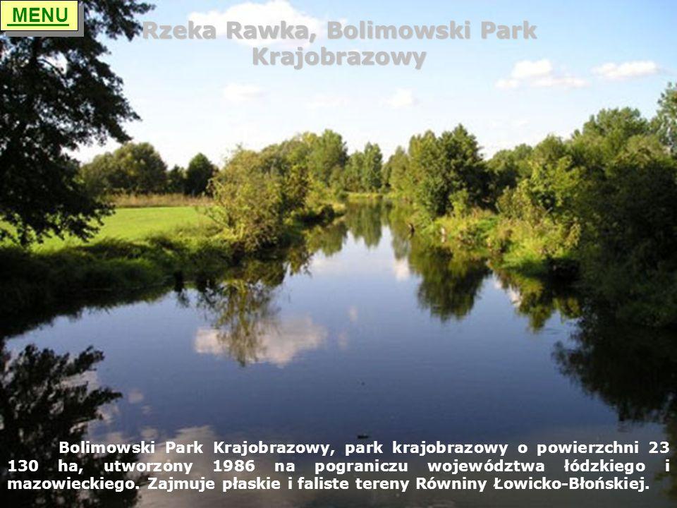 Rzeka Rawka, Bolimowski Park Krajobrazowy