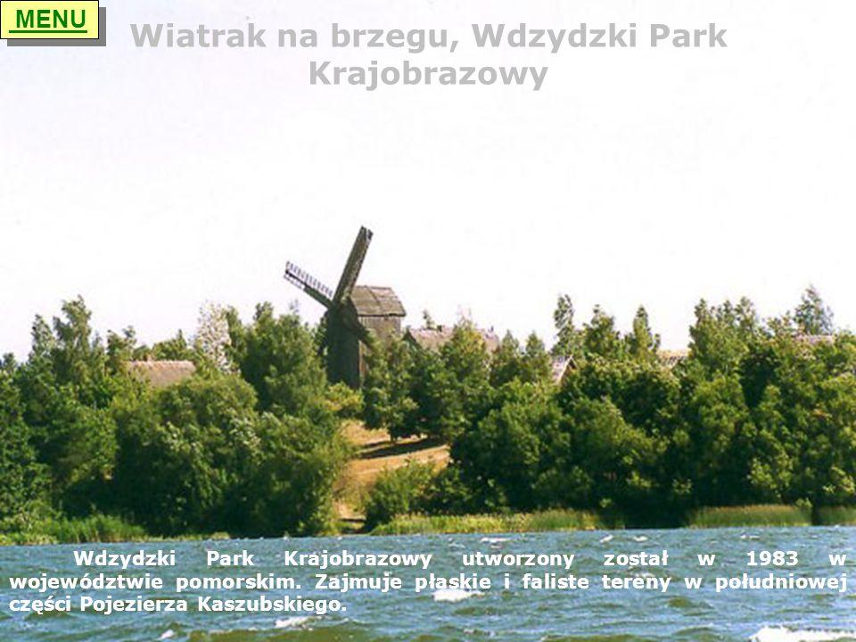 Wiatrak na brzegu, Wdzydzki Park Krajobrazowy