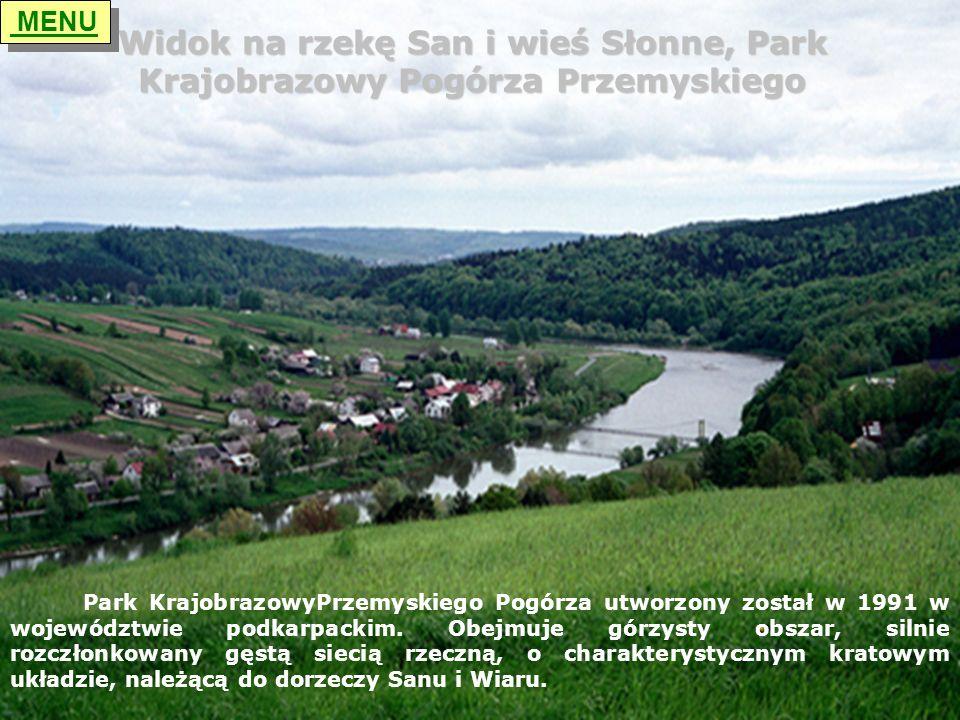 MENU Widok na rzekę San i wieś Słonne, Park Krajobrazowy Pogórza Przemyskiego.