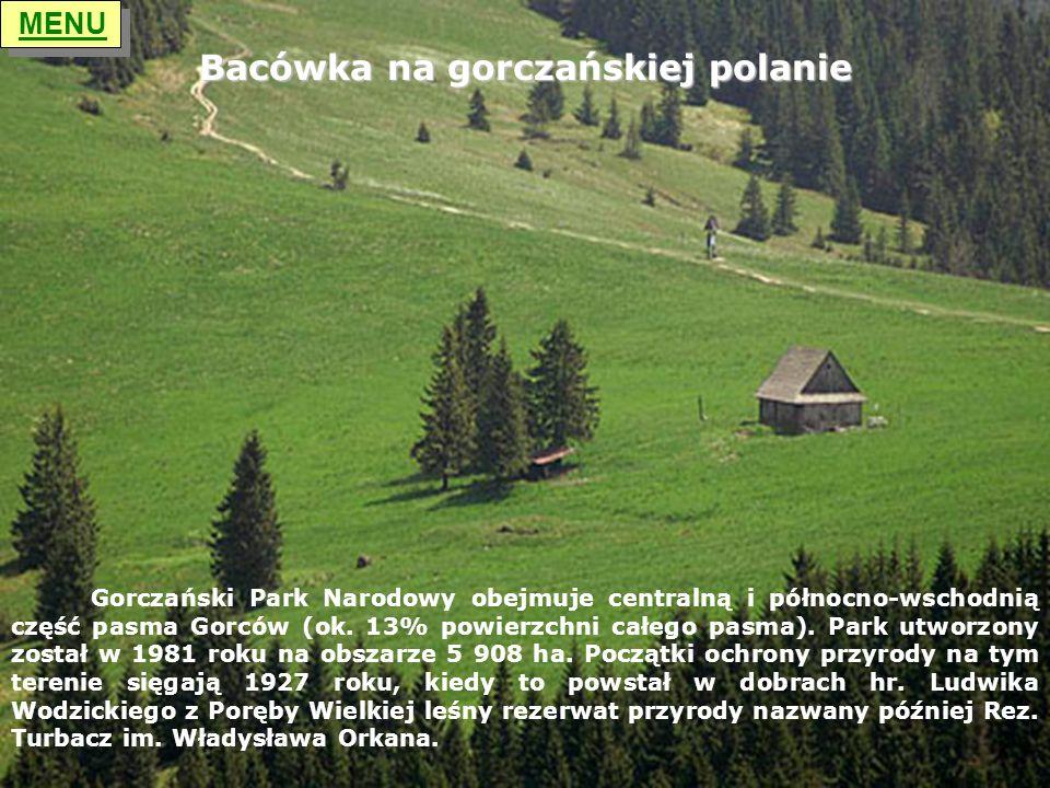 Bacówka na gorczańskiej polanie