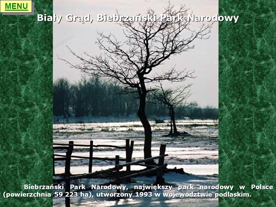 Biały Grąd, Biebrzański Park Narodowy